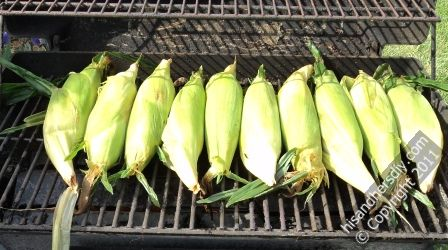 cooking-corn-on-the-cob-on-the-grill